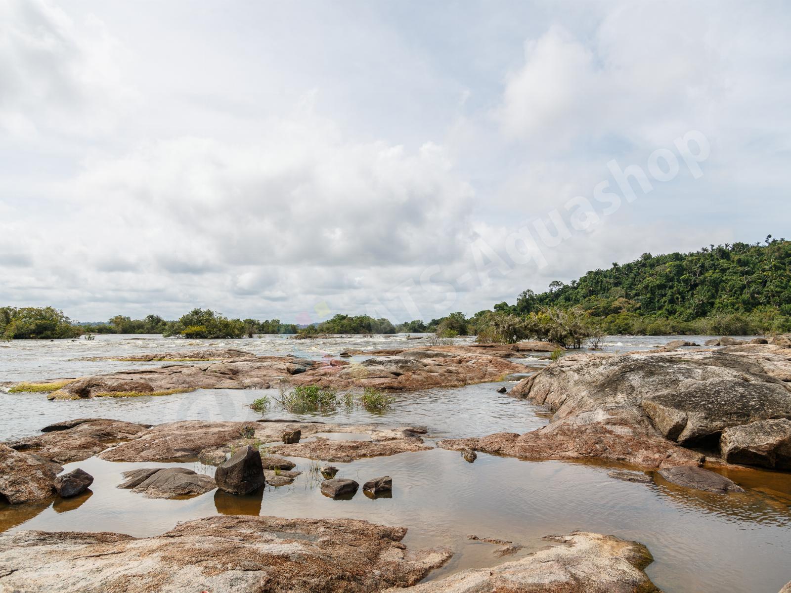 rio xingu  cachoeira do jericoa  andreas tanke 0195 8