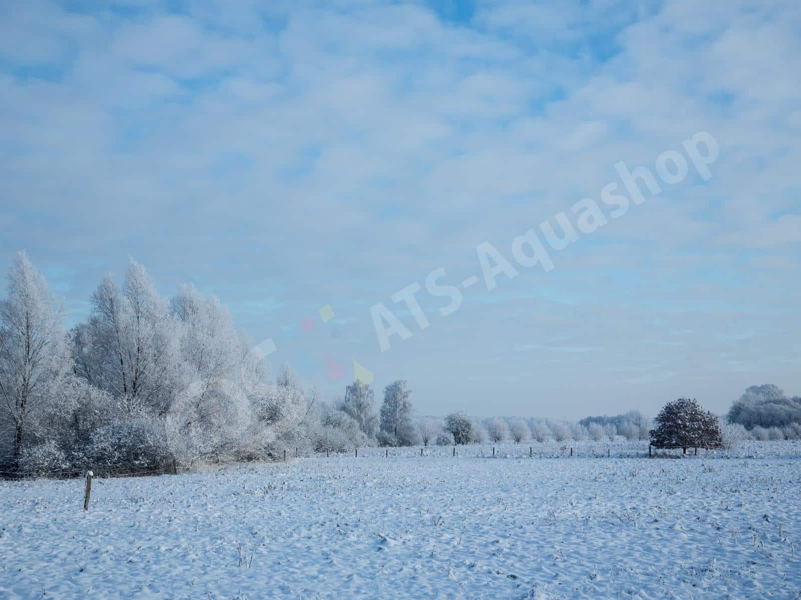 winterlandschaft andreas tanke 0158 10