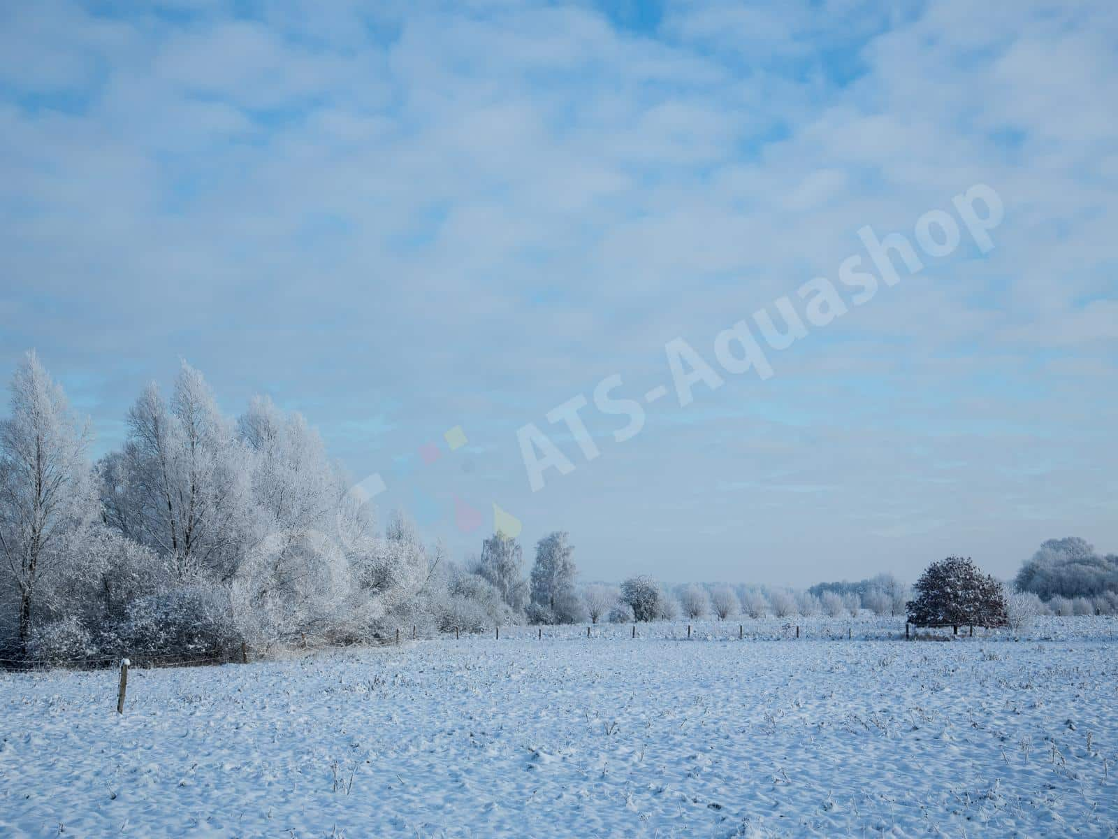 winterlandschaft andreas tanke 0158 9