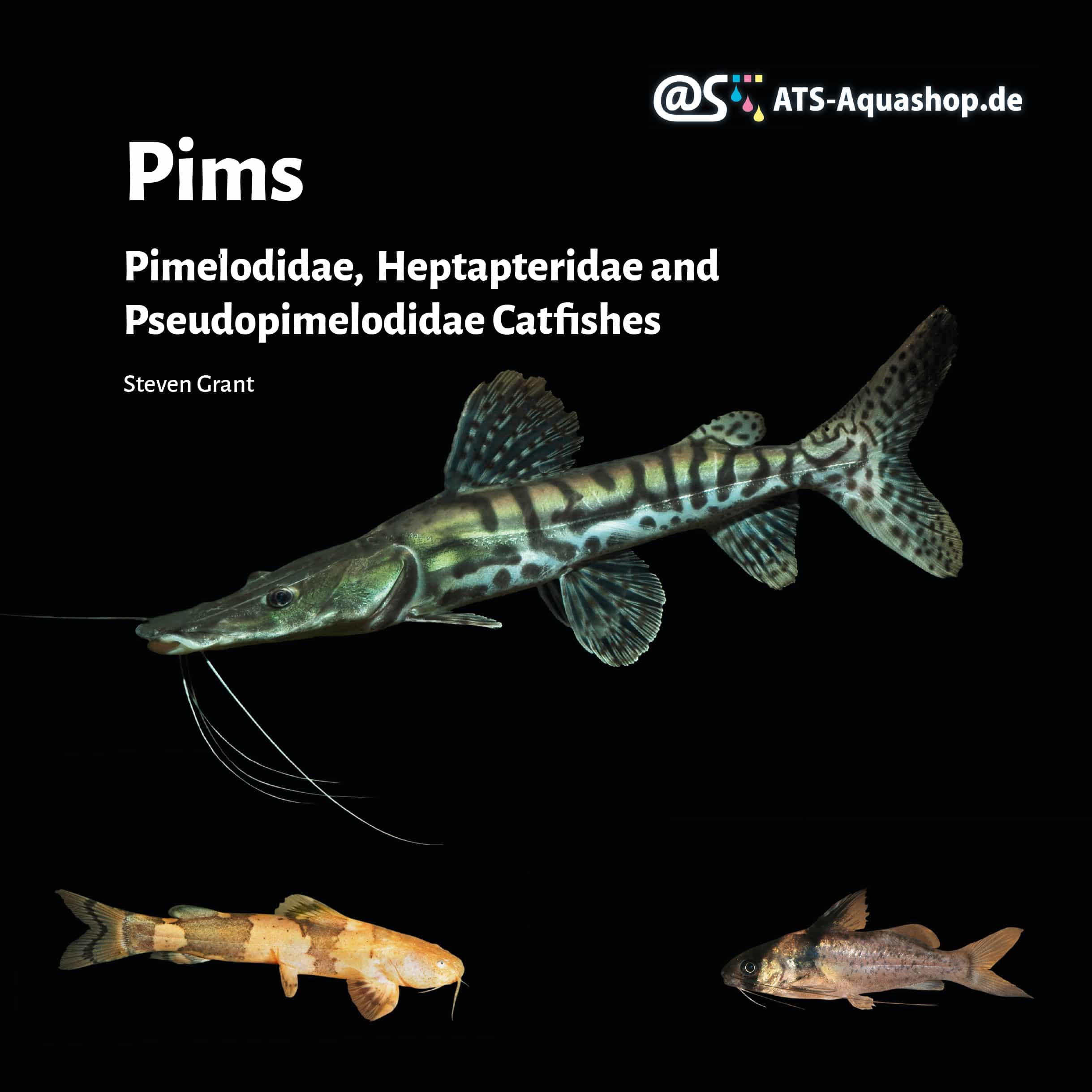 Pims Pimelodidae, Heptapteridae and Pseudopimelodidae Catfishes / Steven Grant